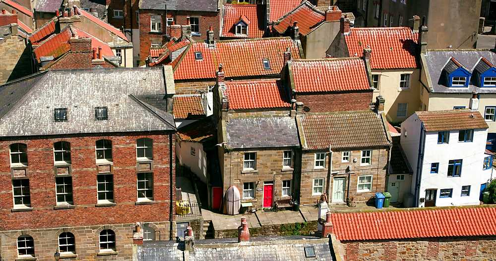 Clifftop view of staithes rooftops - 1130-6419