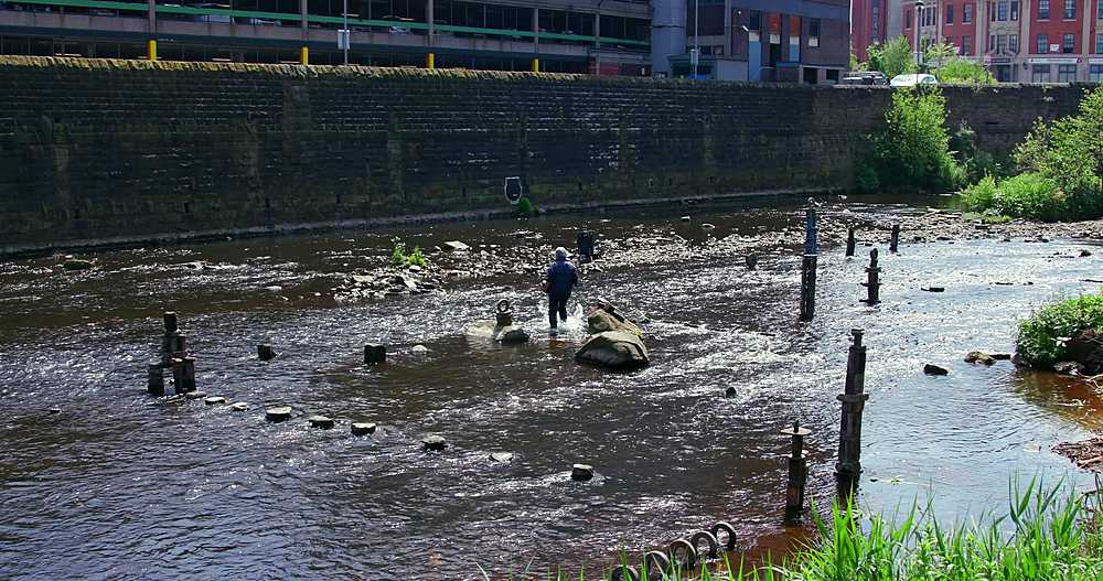 River Artist Dan, River Don, Sheffield - 1130-6473