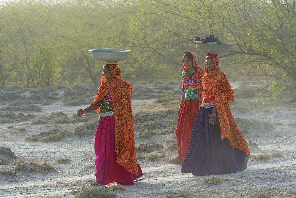 Fakirani women in traditional clothes walking in the desert with basins on their heads, Great Rann of Kutch Desert, Gujarat, India, Asia