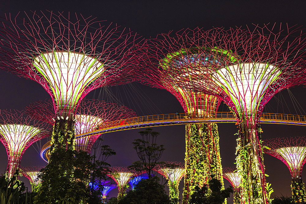 Gardens by the Bay at night, Singapore, Southeast Asia, Asia
