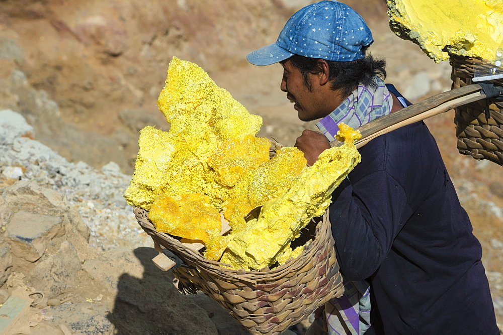 Sulphur carriers climbing out of Kawah Ijen volcano (Ijen crater), Banyuwangi, East Java, Indonesia, Southeast Asia, Asia
