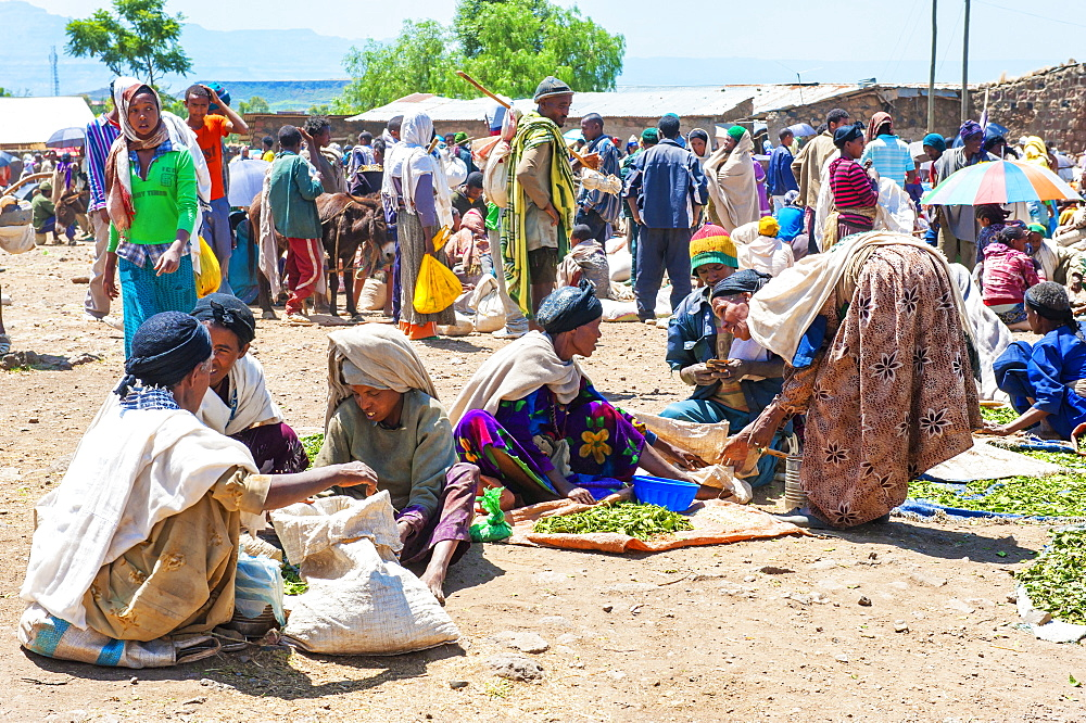 Women selling vegetables, Lalibela market, Amhara region, Northern Ethiopia, Africa