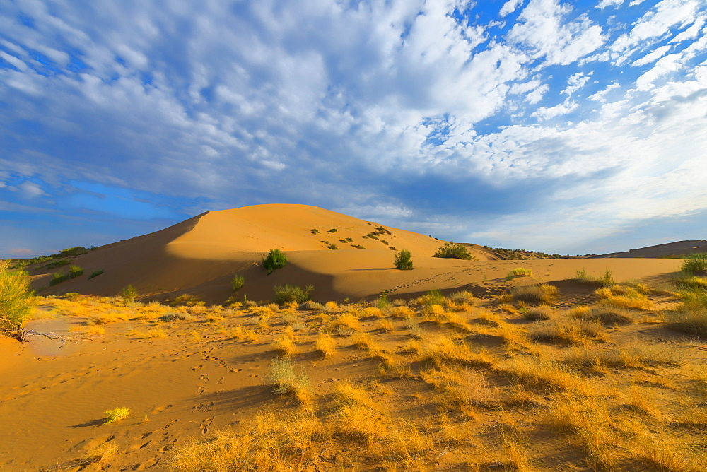 Singing Dunes, Altyn-Emel National Park, Almaty region, Kazakhstan, Central Asia, Asia