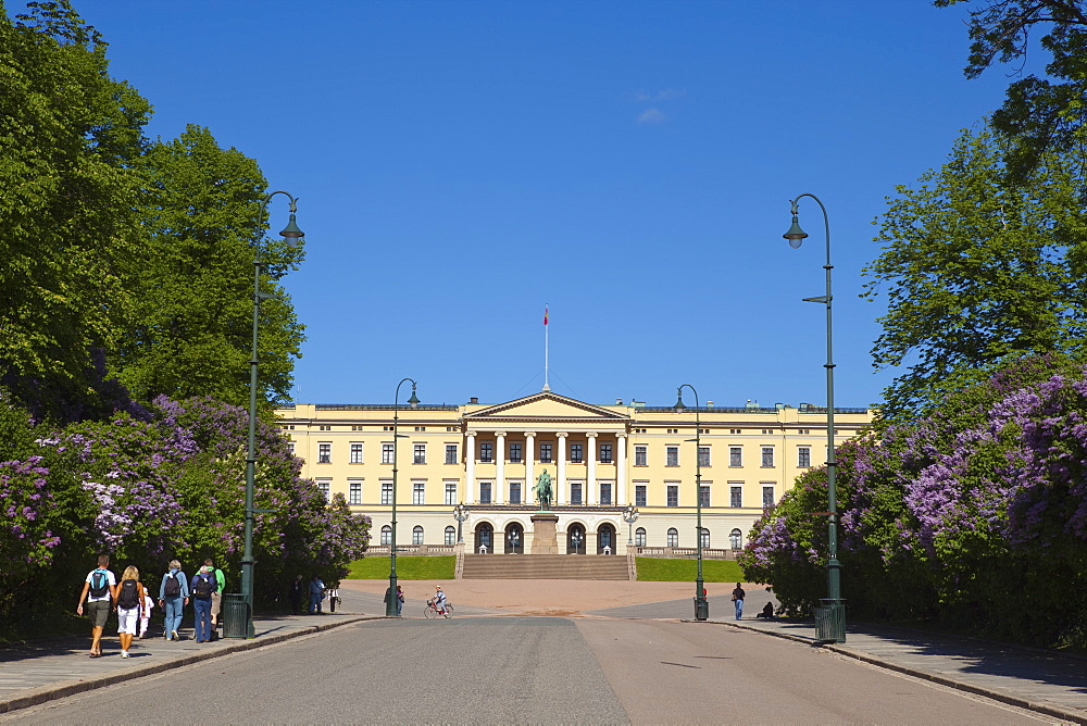 Royal Palace (Slottet), Oslo, Norway, Scandinavia, Europe