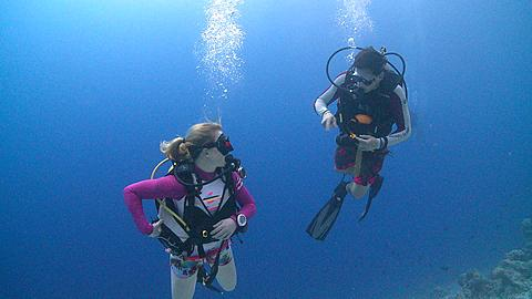 Divers/scientists swim down to measure anemone and anemone damsel fish (Amphiprion akindynos)