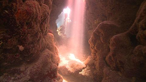Diver (Liam Allan) swims through coral cave into shafts of light