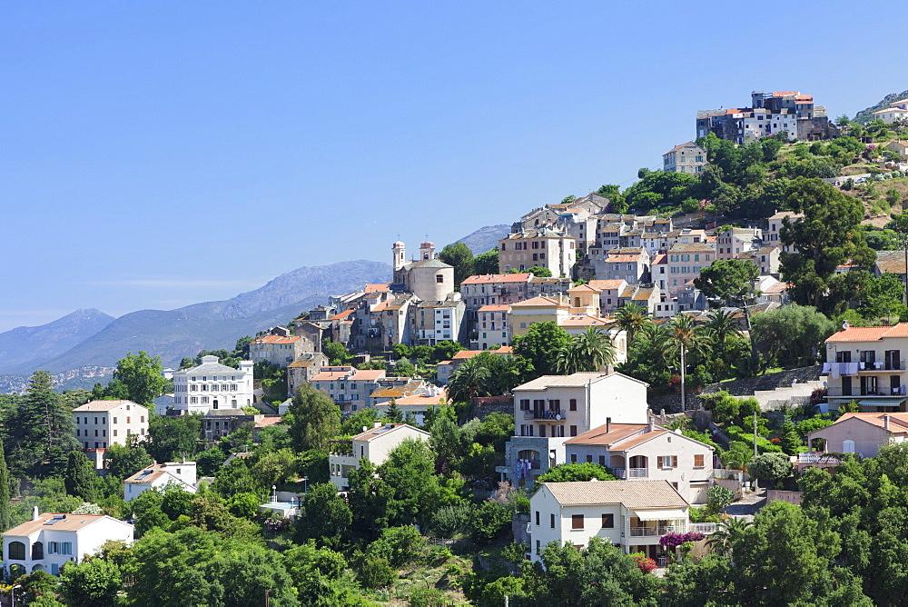 Oletta, Corsica, France, Mediterranean, Europe