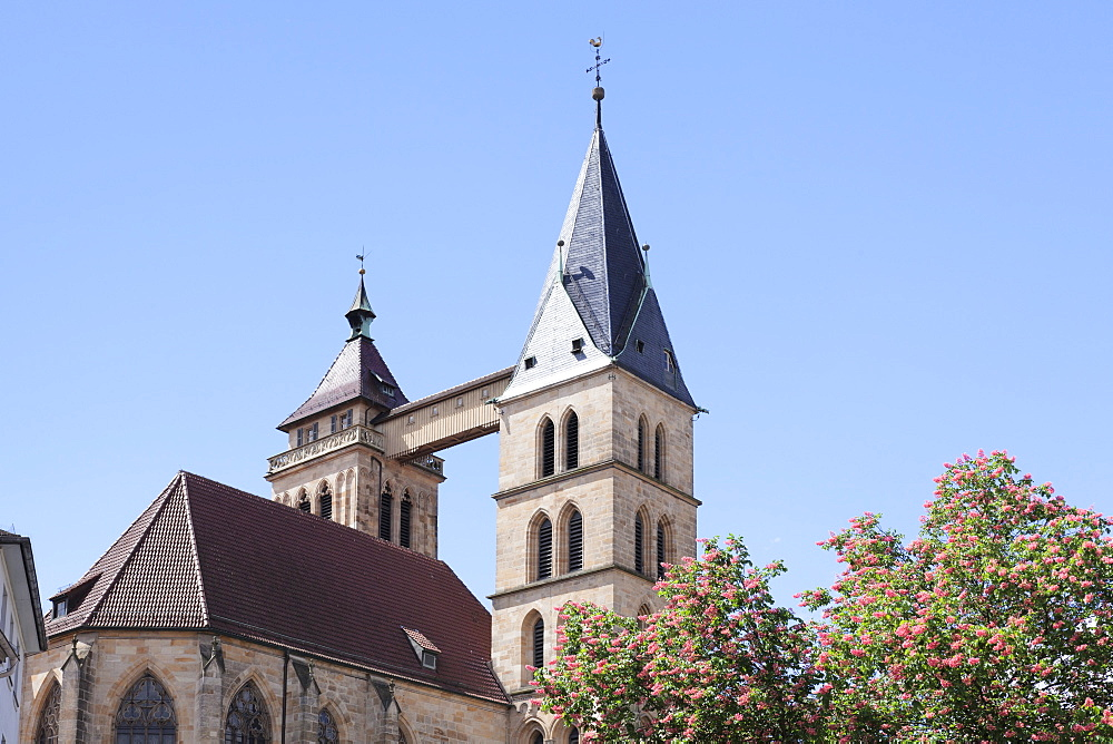 St. Dionysius church (Stadtkirche St. Dionys), Esslingen (Esslingen-am-Neckar), Baden-Wurttemberg, Germany, Europe