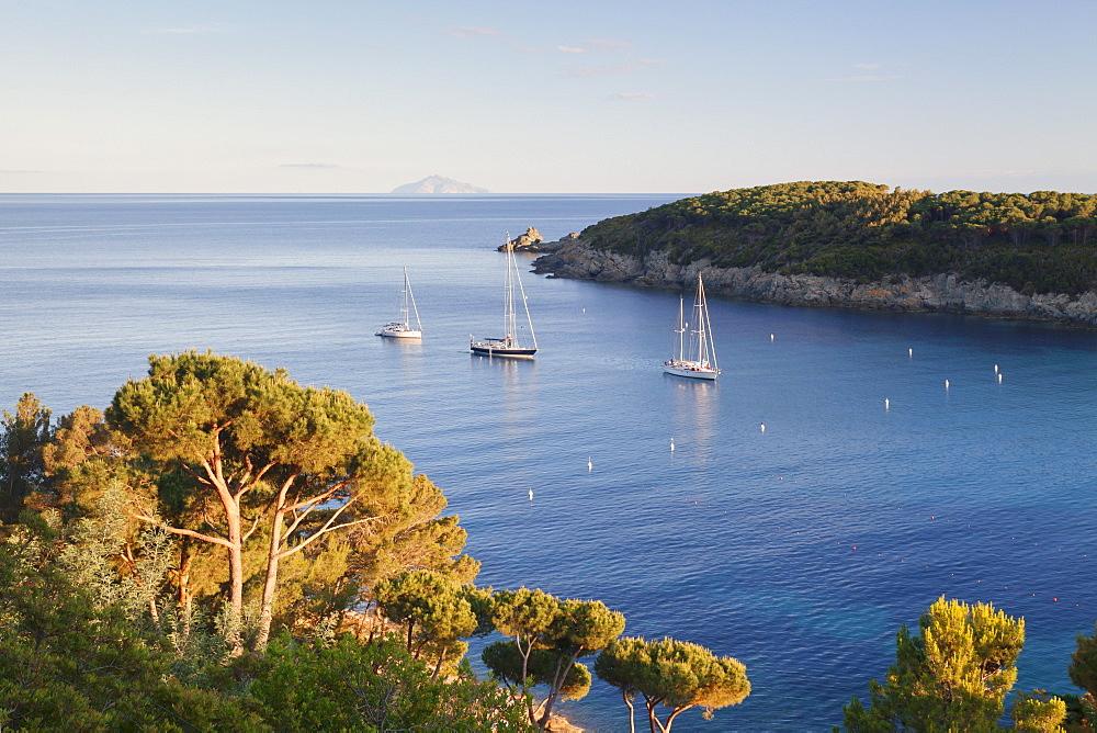 Sailing boats in the bay of Fetovaia at sunset, Island of Elba, Livorno Province, Tuscany, Italy, Europe