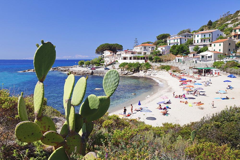 Beach of Seccheto, Island of Elba, Livorno Province, Tuscany, Italy, Europe