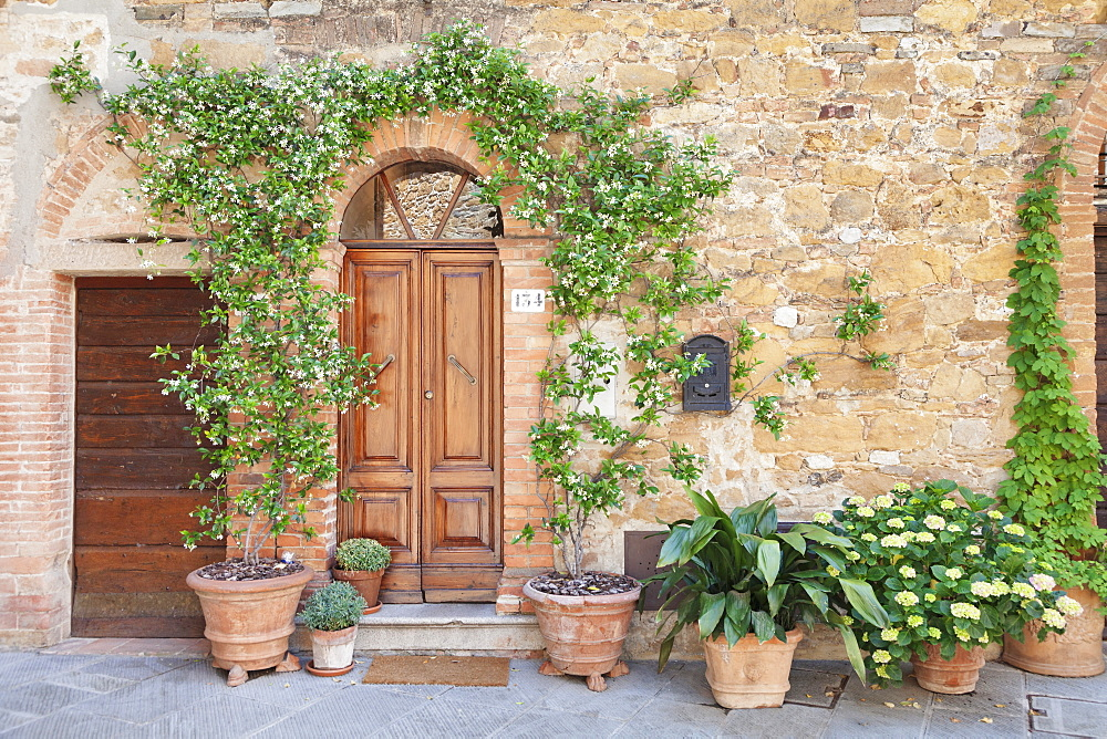 Traditional house with flower pots, Montisi, Siena Province, Tuscany, Italy, Europe
