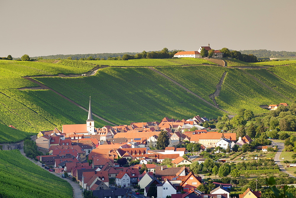 Wine village of Escherndorf and Vogelsburg Castle, Volkacher Mainschleife, Main River, Mainfranken, Lower Franconia, Bavaria, Germany, Europe
