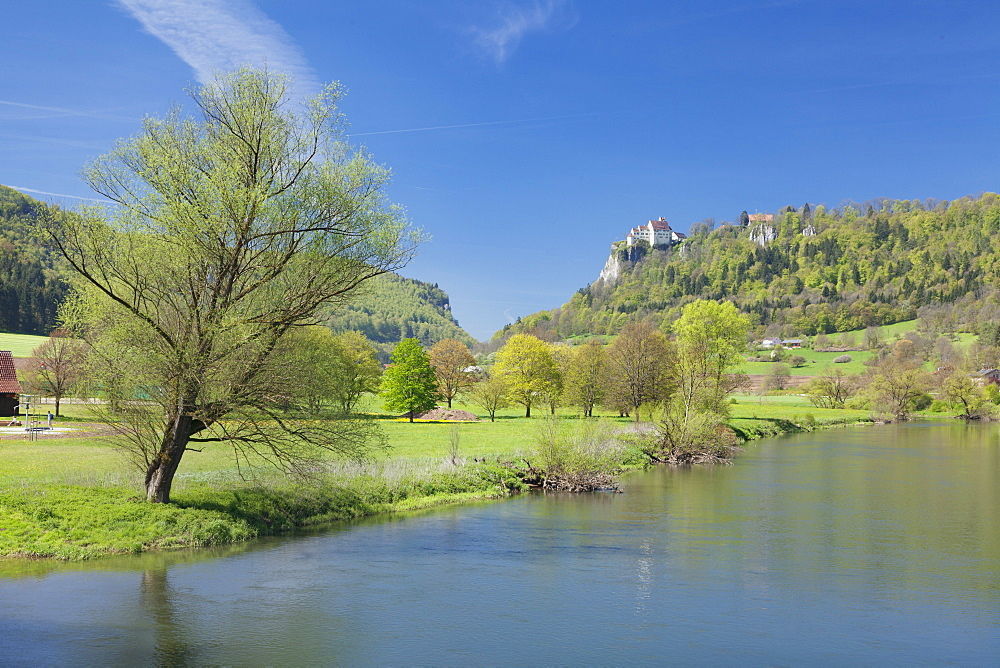 Schloss Werenwag (Werenwag Castle), Hausen an der Donau, Danube River, Danube Valley, Upper Danube Nature Park, Swabian Alb, Baden-Wurttemberg, Germany, Europe