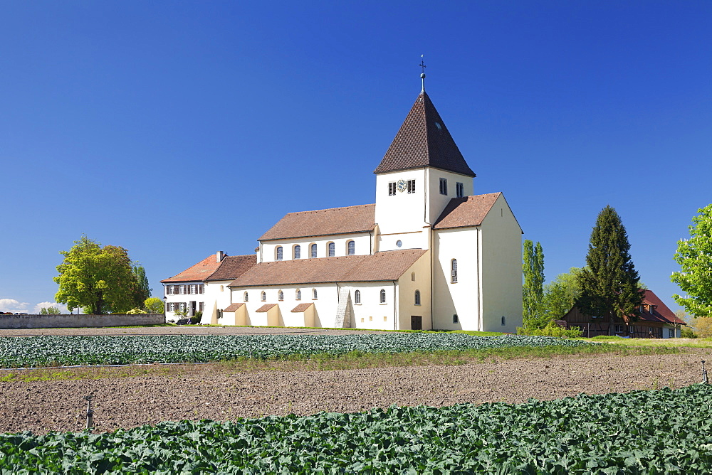 St. Georg church, Oberzell, UNESCO World Heritage Site, Reichenau Island, Lake Constance, Baden-Wurttemberg, Germany, Europe