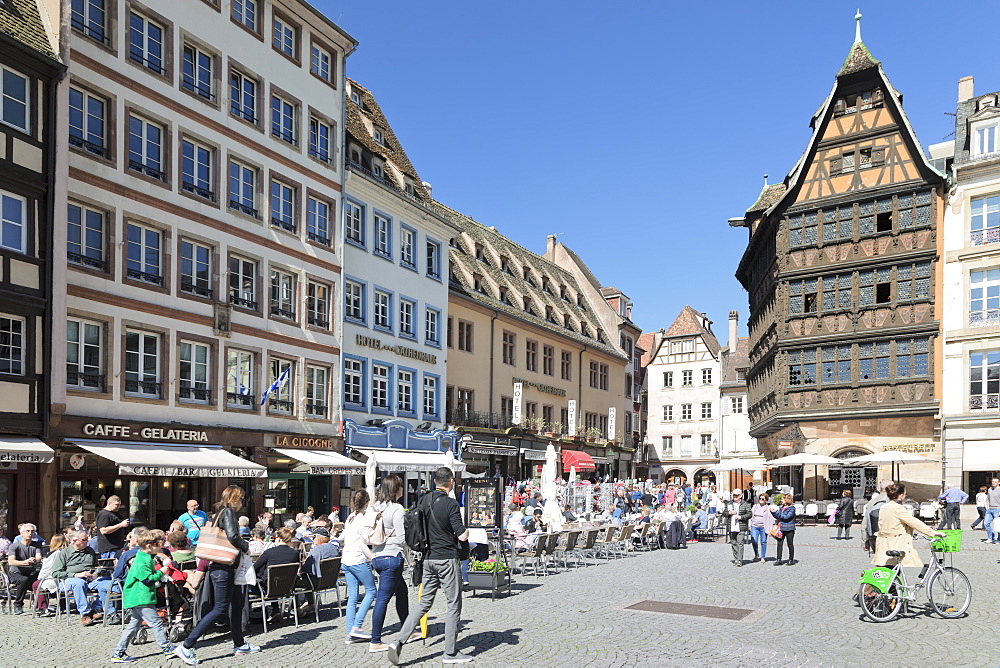 Maison Kammerzell, Place de la Cathedrale, UNESCO World Heritage Site, Strasbourg, Alsace, France, Europe - 1160-3906