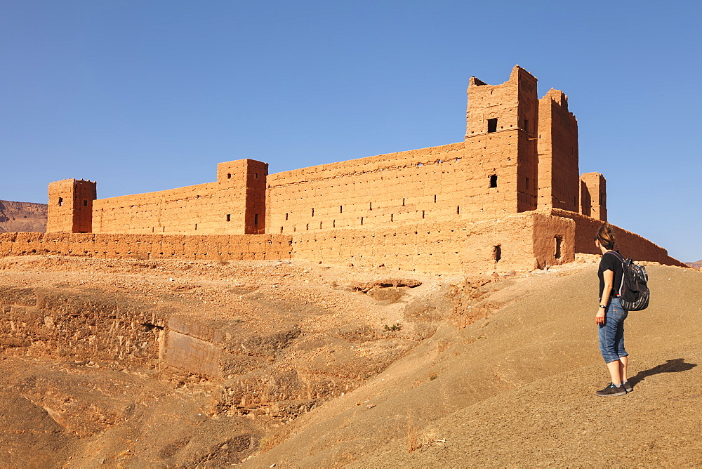 Kasbah Tamnougalt, Draa Valley, near Agdz, Morocco, North Africa, Africa - 1160-4071
