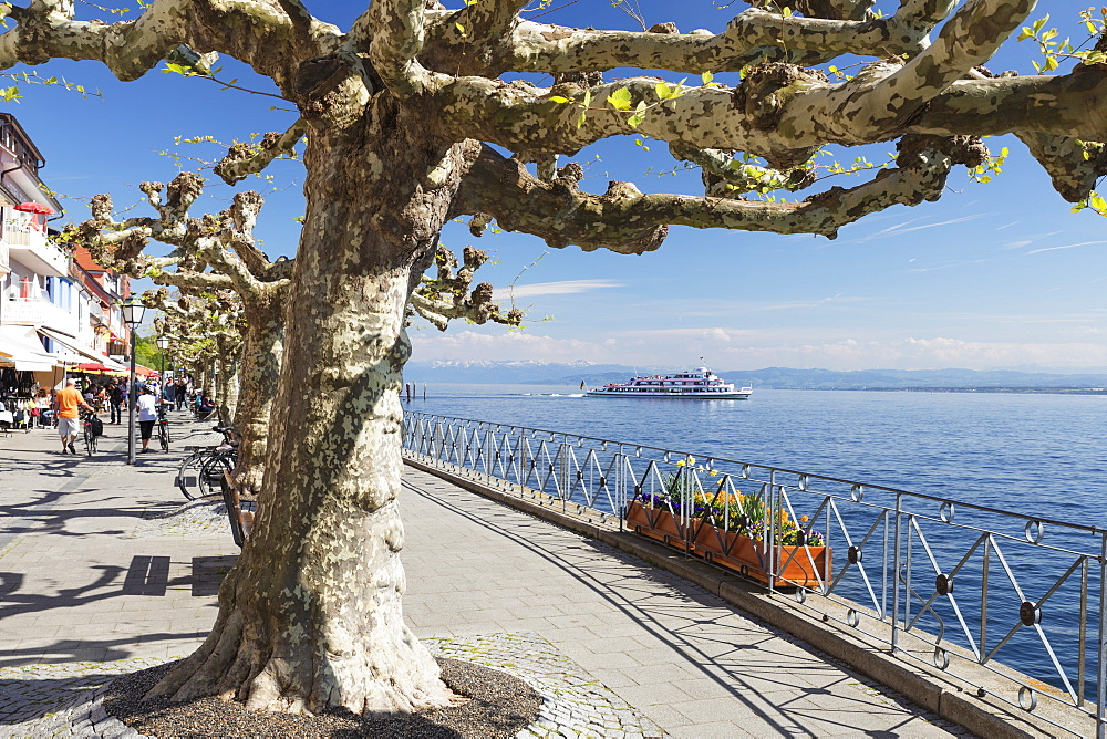View from the promenade to the Alps, Meersburg, Lake Constance, Baden-Wuerttemberg, Germany