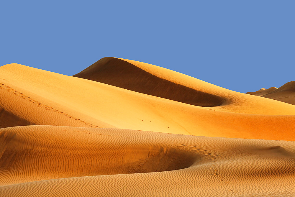 Sand dunes of Maspalomas at sunset, Maspalomas, Gran Canaria, Canary Islands, Spain, Atlantic, Europe