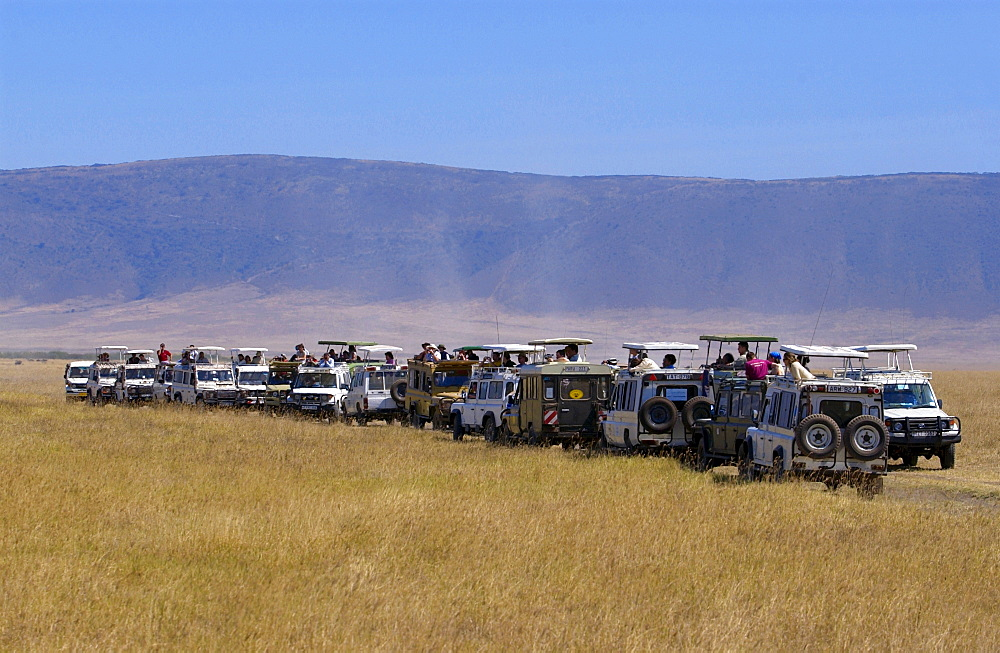 Tourists in the Ngorongoro Crater,Tanzania - 1161-131