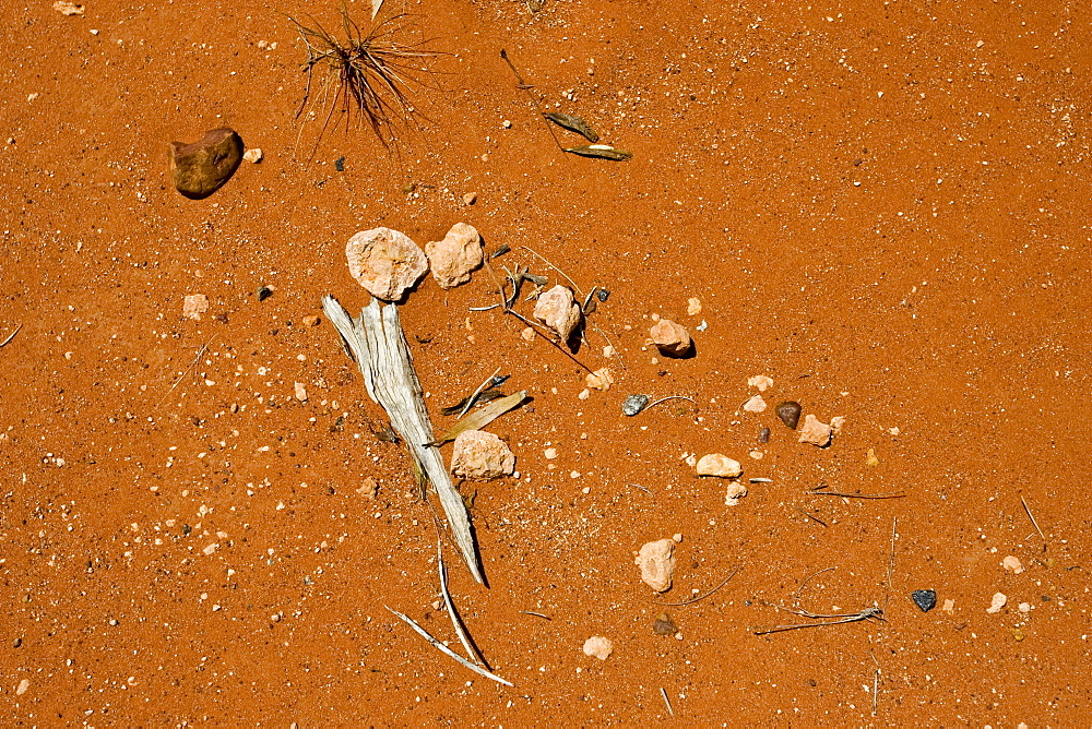 Stones, bark and leaves in dirt at King's Canyon, Northern Territory, Australia