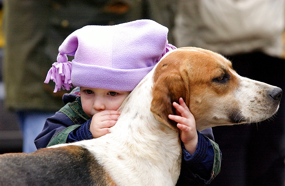 A toddler crying whilst embracing a foxhound before the Heythrop New Year's Day Hunt in the Market Place in Stow on the Wold, Oxfordshire