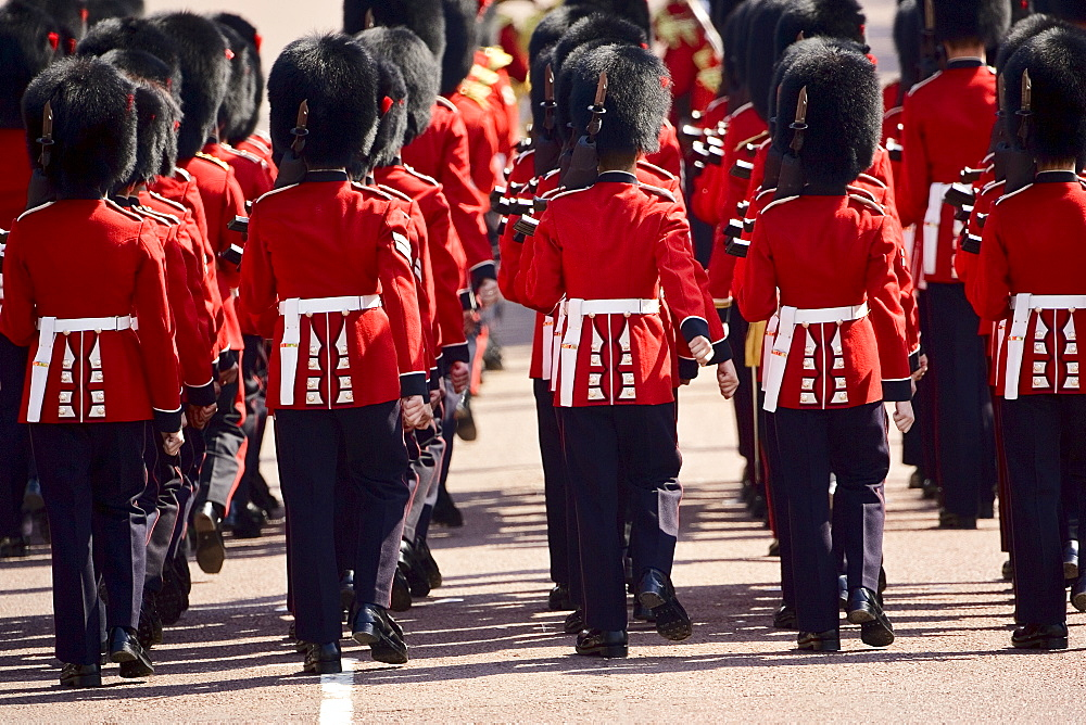Foot Guards of the Household Division in Military Parade parade, London, UK