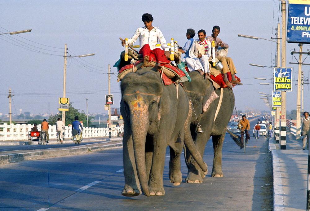 Riding Elephants, Old Delhi, India