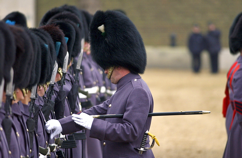 The Household Division Irish Guards on parade under inspection by senior officer in London, UK