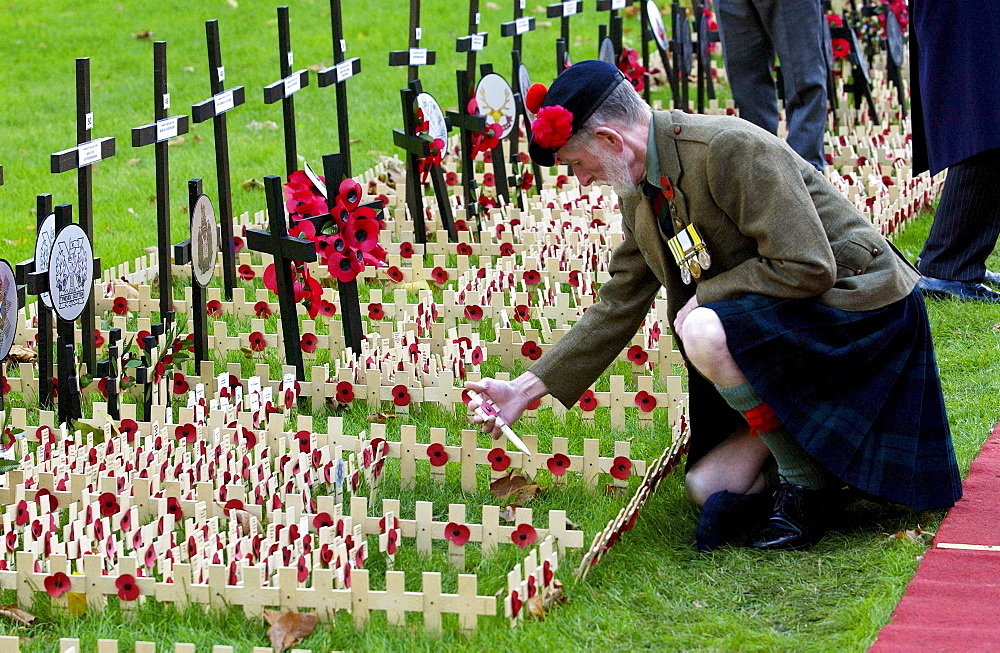 Private Joe Roberts of the Black Watch Regiment visiting the field of remembrance at Westminster Abbey commemorating the war dead