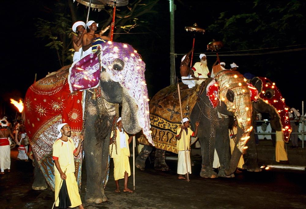 Raja Perahera carnival caravan with elephants in illuminiated masks and silken rugs at a festival, Sri Lanka.