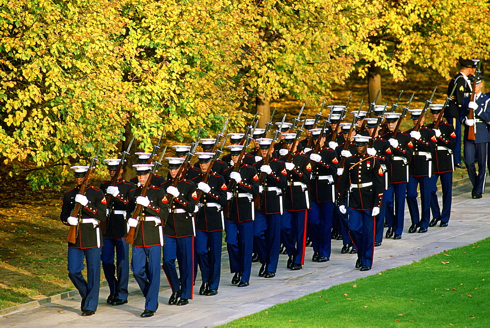 U.S Military at Arlington National Cemetery in Washington.