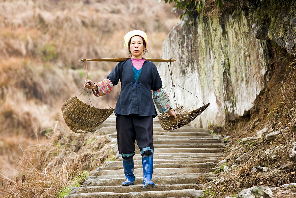 Woman carrying baskets from terrace fields of Longsheng by mountian village of Ping An, Guilin, China - 1161-3463
