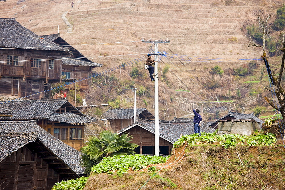 Telegraph pole being installed in the mountain village of Ping An, Longsheng, near Guilin, China