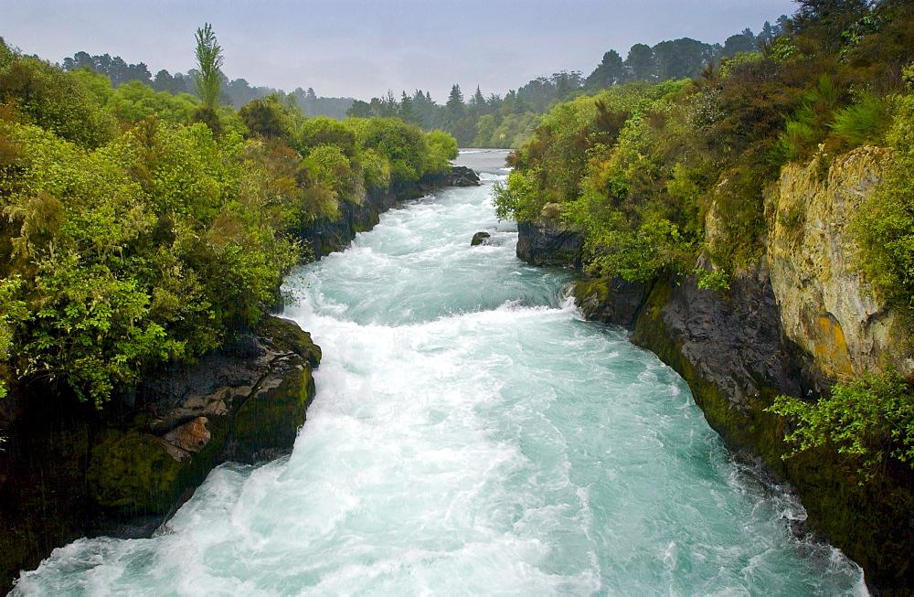 Waterfall, North Island, New Zealand