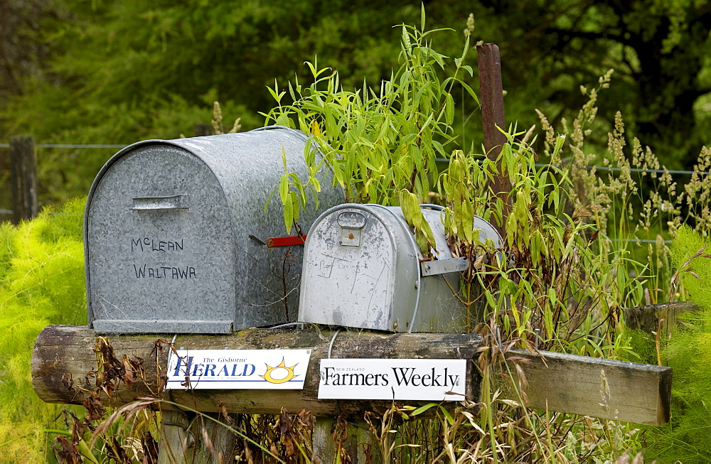 Pair of mailboxes, North Island, New Zealand