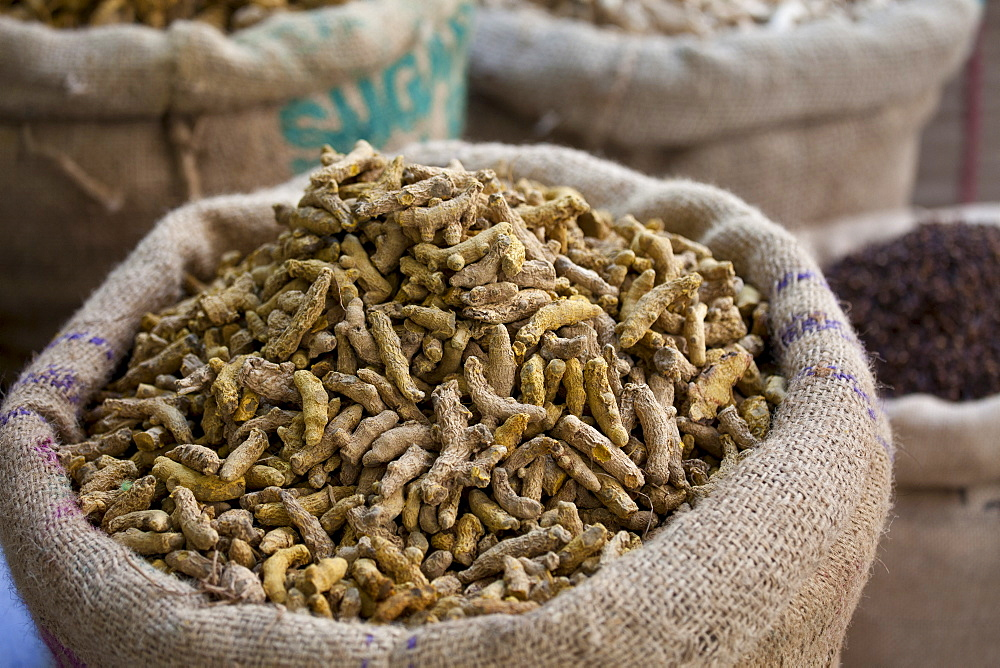 Dried ginger root on sale at Khari Baoli spice and dried foods market, Old Delhi, India