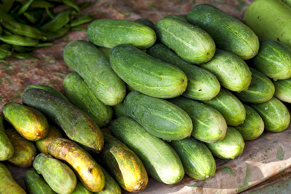 Fresh cucumbers on sale at market stall in Varanasi, Benares, India