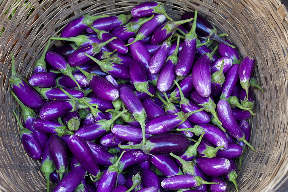 Fresh aubergines on sale at market stall in Varanasi, Benares, India