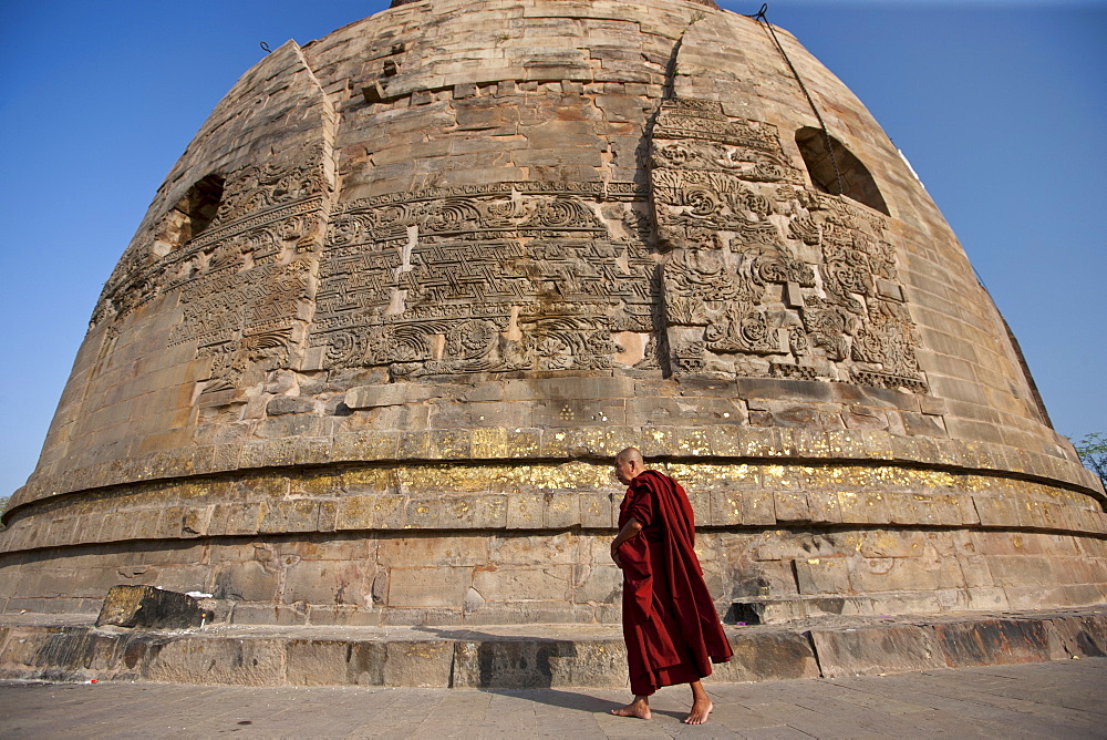 Buddhist monk praying as he walks around Dhamakh Stupa at Sarnath ruins near Varanasi, Benares, Northern India