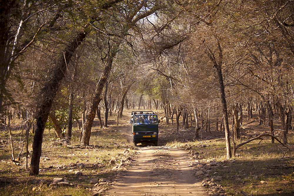 Tour group of eco-tourists in Ranthambhore National Park, Rajasthan, Northern India