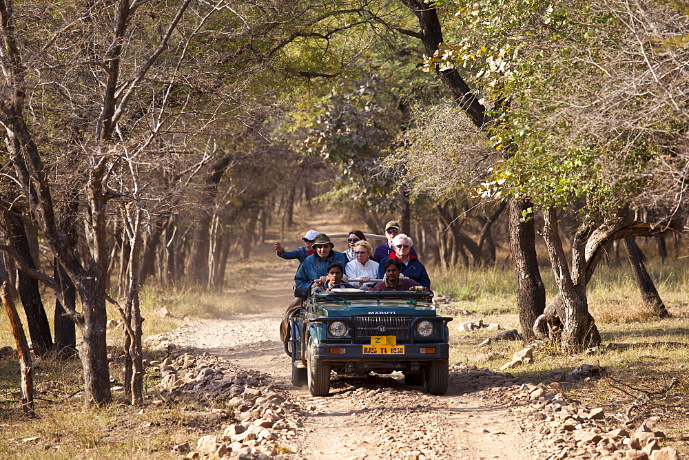 Tour group of eco-tourists in Maruti Suzuki Gypsy King 4x4 vehicle in Ranthambhore National Park, Rajasthan, Northern India - 1161-4731