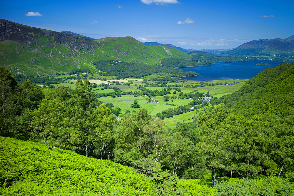 View of Derwent Fells in the Cumbrian mountains across Derwent Water in the Lake District National Park, Cumbria, UK