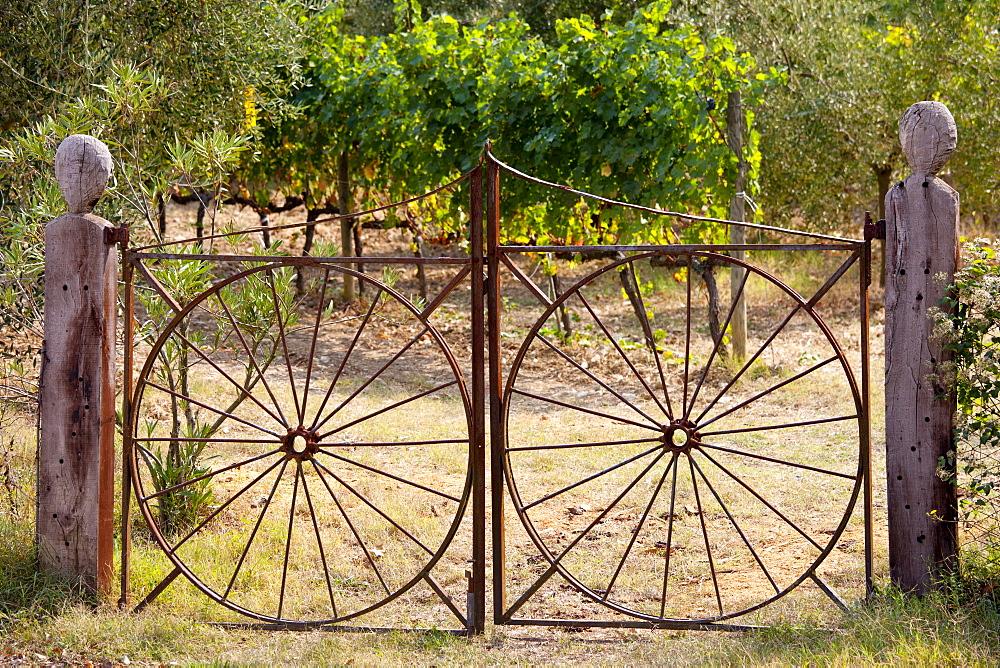 Farm gateway of wrought iron near Montalcino, Val D'Orcia, Tuscany, Italy