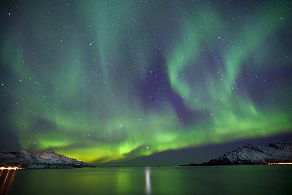 Aurora Borealis spectacular Northern Lights green and purple curtain effect and Venus star at Grotfjord, Kvaloya island, Tromso, Arctic Circle, Northern Norway