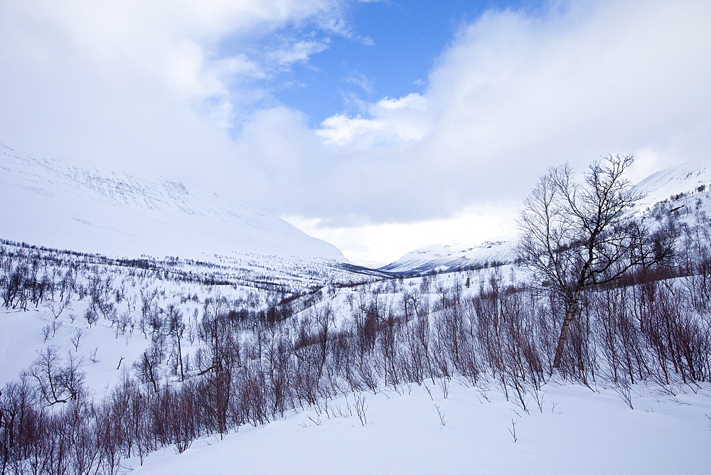 Arctic wilderness in Ovre Dividal National Park in the Arctic Circle region of Tromso, Northern Norway