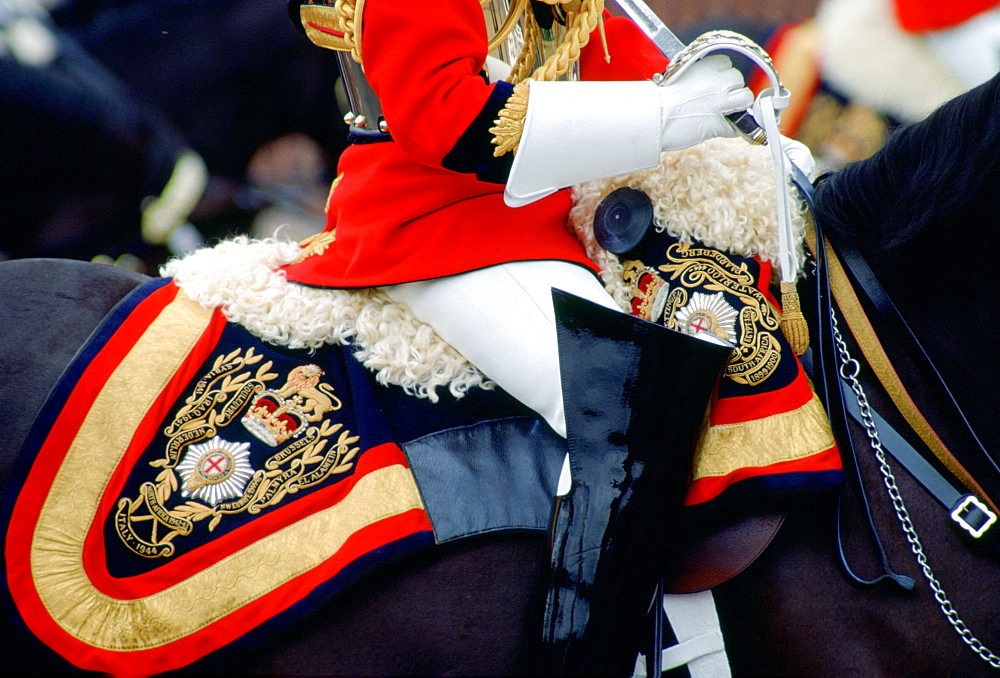 Close up detail of the uniform and tack of a mounted guardsman of the Lifeguards at the Trooping the Colour ceremony, London