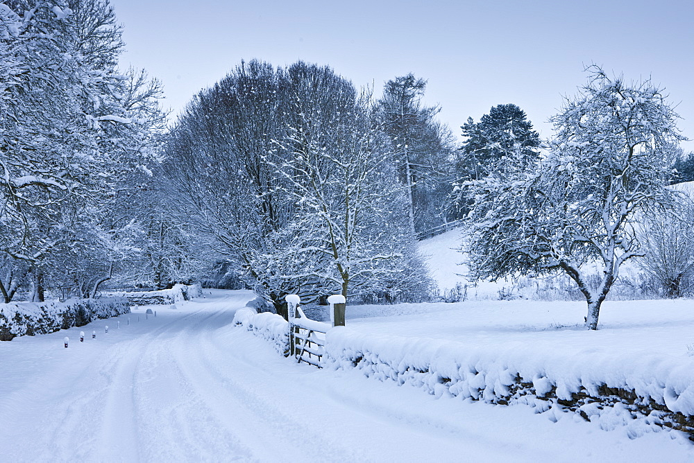 Traditional snow scene in a country lane in The Cotswolds, Swinbrook, Oxfordshire, United Kingdom