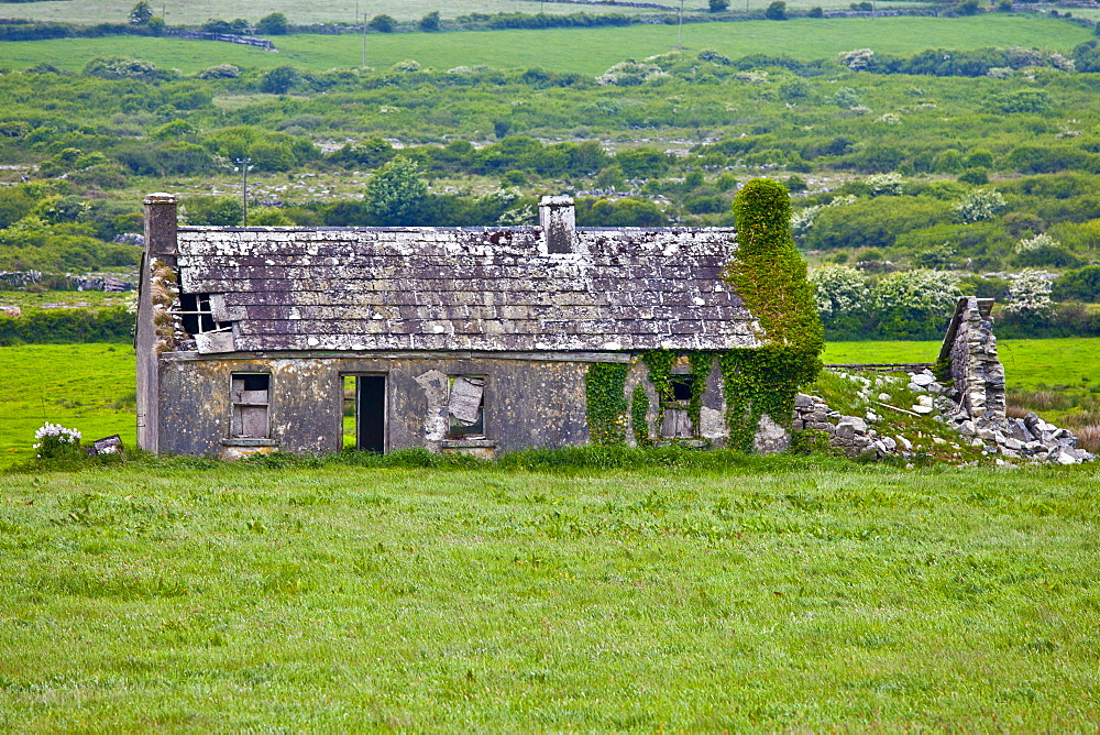 Derelict old period cottage in need of renovation in The Burren in County Clare, West of Ireland