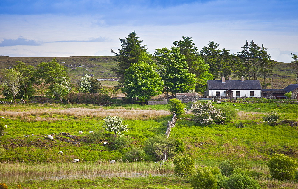 Farmhouse home nestling at the foot of the Maumturks  mountains, near Recess, in Connemara, County Galway, Ireland
