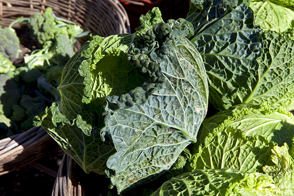 Freshly-picked green cabbages and brocolli on sale at food market in Bordeaux region of France
